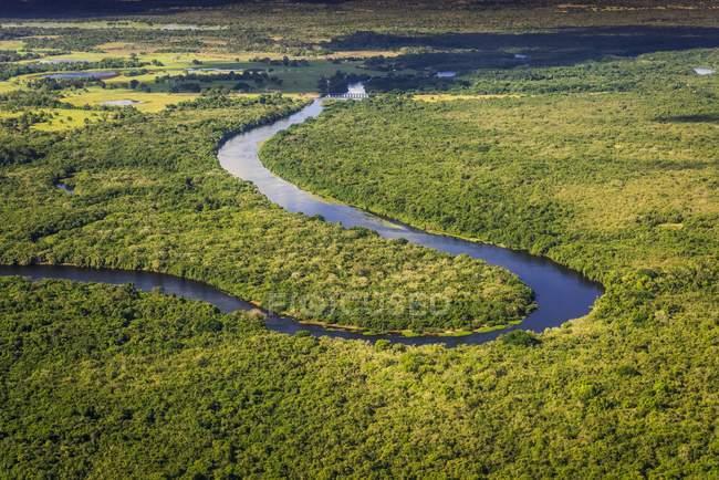 Aerial view of Rio Negro flowing through jungle, Pantanal, Mato Grosso do Sul, Brazil, South America — стоковое фото