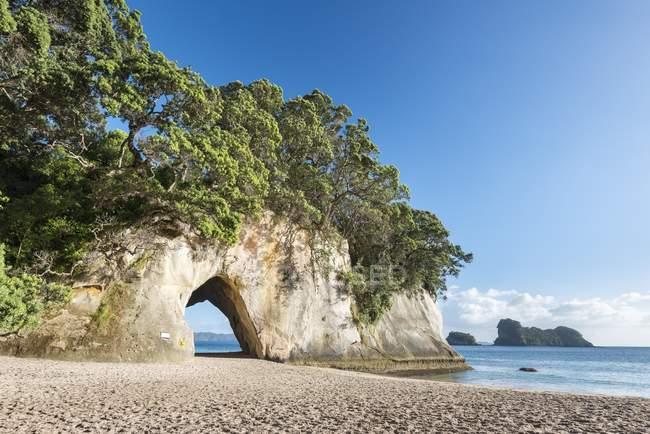 Бухта собору Cove з природного арка, ртуть Bay, Coromandel півострів Північна острові, Нової Зеландії, Океанія — стокове фото