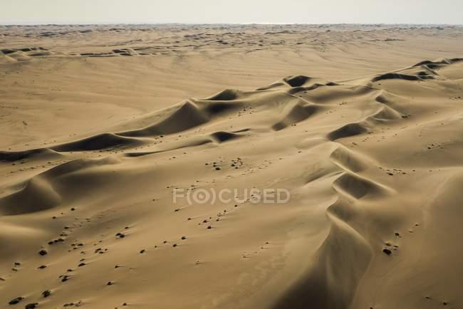 Sand dunes in Namib desert, Erongo region, Namibia, Africa — стокове фото