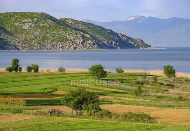 Большое озеро Преспа в национальном парке Преспа, вблизи Корча, Албания, Европа — стоковое фото