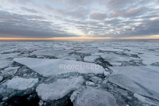Ice floes of pack ice in evening mood, Arctic Ocean, Spitsbergen Island, Svalbard Archipelago, Svalbard and Jan Mayen, Norway, Europe — Stock Photo