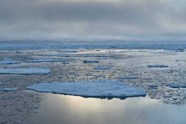 Ice floes by edge of pack-ice in Arctic Ocean, Spitsbergen Island, Svalbard Archipelago, Svalbard and Jan Mayen, Norway, Europe — Stock Photo