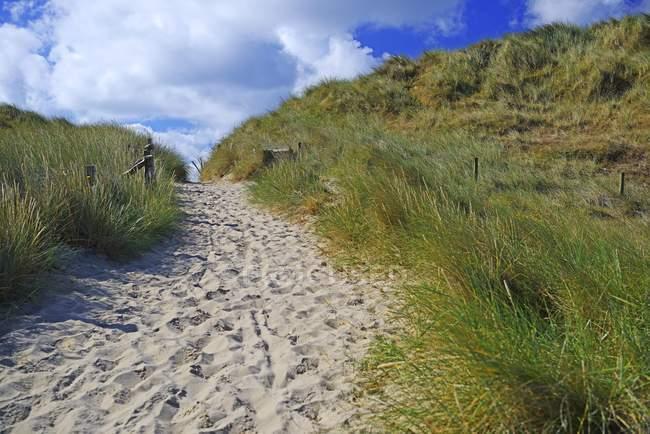 Шлях між піщаними дюнами, Еллбоген, список, Sylt, північно-Фризька острови, Північна Frisia, Шлезвіг-Гольштейн, Німеччина, Європа — стокове фото