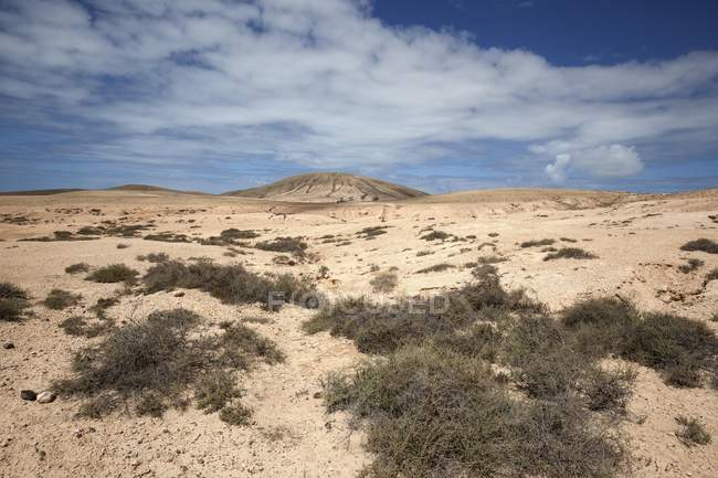 Пустельний краєвид з хмарами в Ла-Олива, Фуертевентура, Канарські острови, Іспанії, Європі — стокове фото