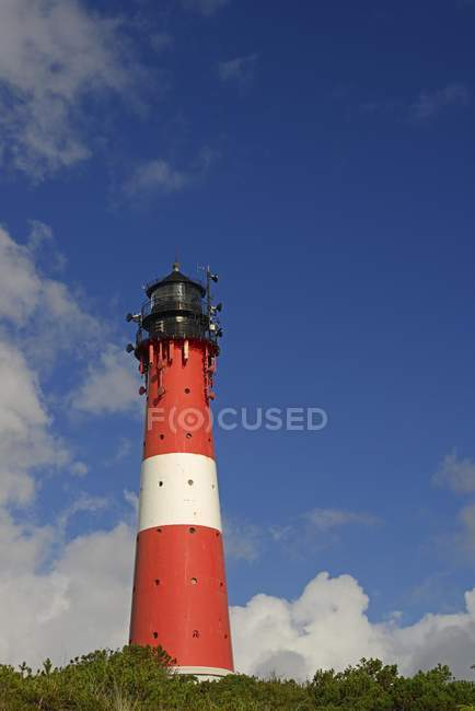 Hornum Lighthouse in green vegetation, Sylt, North Frisian Islands, North Frisia, Schleswig-Holstein, Germany, Europe — Stock Photo
