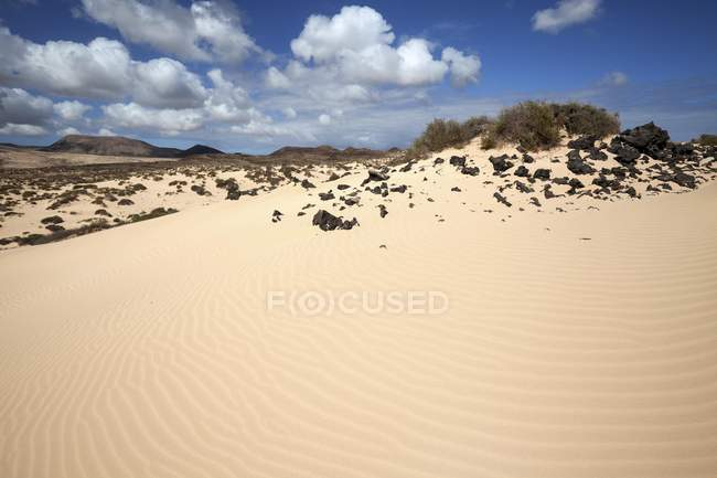 Sand of wandering dunes El Jable, Las Dunas de Corralejo, Corralejo Natural Park, Fuerteventura, Canary Islands, Spain, Europe — Stock Photo