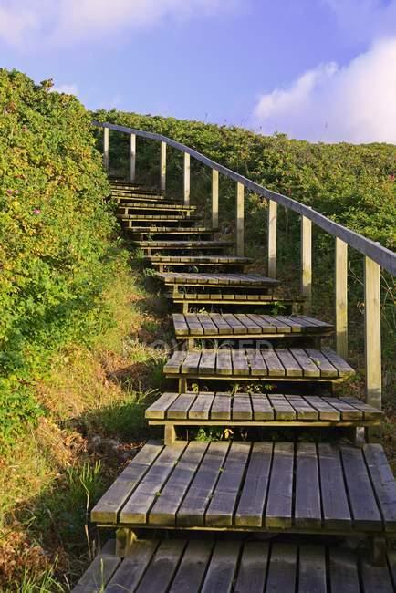 Promenade à la plage à travers les dunes de Rantum, Sylt, îles frisonnes du Nord, Frise du Nord, Schleswig-Holstein, Allemagne, Europe — Photo de stock