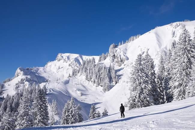 Latschenkopf и Idealhang, горнолыжный курорт Браунек, Ленгрис, Исарвинкель, Верхняя Бавария, Бавария, Германия, Европа — стоковое фото