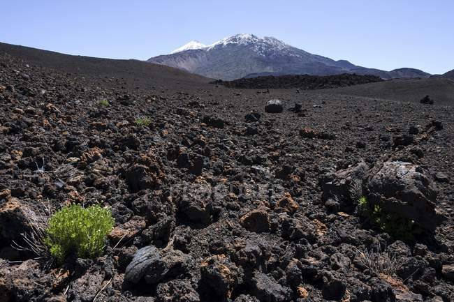 Вулканічний пейзаж і засніжені Pico-дель-Тейде і Піко Viejo, Національний парк Тейде, Всесвітньої спадщини ЮНЕСКО сайт, Тенеріфе, Іспанія, Європа — стокове фото