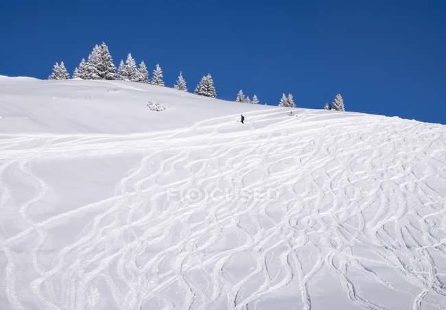 Горнолыжный склон с порошковым снегом, горнолыжный курорт Браунек, Исарвинкель, Верхняя Бавария, Бавария, Германия, Европа — стоковое фото