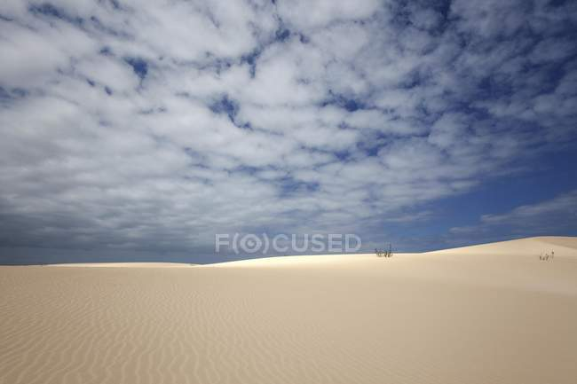 Sand dunes under blue sky with clouds, wandering dunes of El Jable, Las Dunas de Corralejo, Corralejo Natural Park, Fuerteventura, Canary Islands, Spain, Europe — стоковое фото