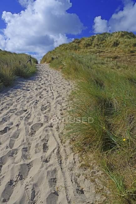 Путь между песчаными дюнами, Элленбоген, Лист, Силт, Северные Фризские острова, Северная Фризия, Шлезвиг-Гольштейн, Германия, Европа — стоковое фото