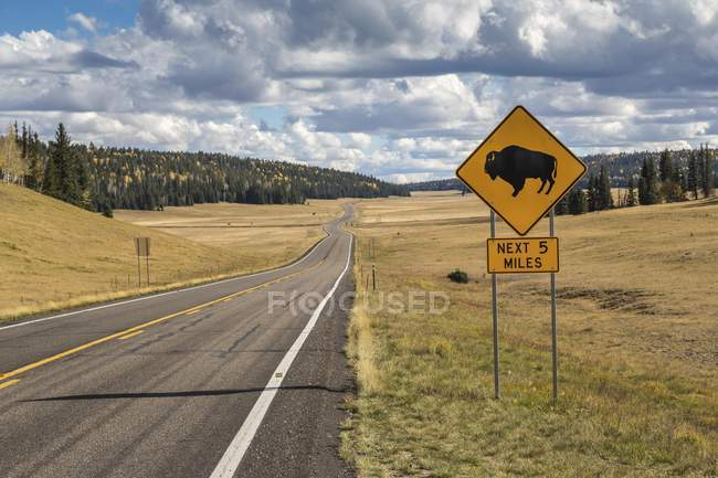Road sign warning of bison, road to Grand Canyon North Rim, Arizona, USA, North America — Photo de stock