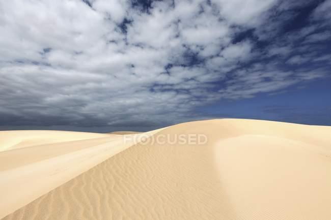 Dunes de sable sous le ciel bleu avec des nuages, dunes errantes d'El Jable, Las Dunas de Corralejo, parc naturel de Corralejo, Fuerteventura, Iles Canaries, Espagne, Europe — Photo de stock