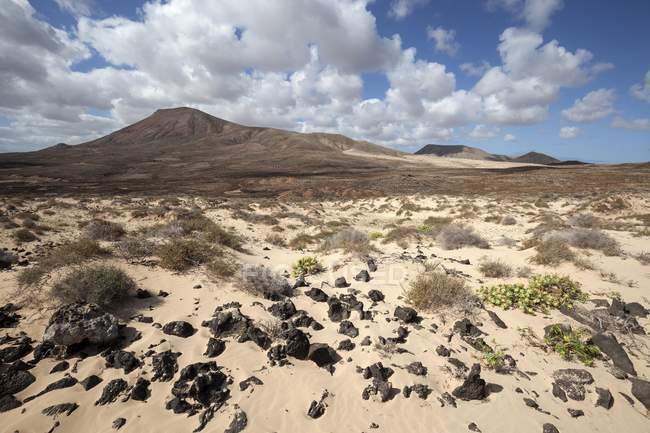 Barren landscape in southern area of Corralejo Natural Park, Fuerteventura, Canary Islands, Spain, Europe — Stock Photo