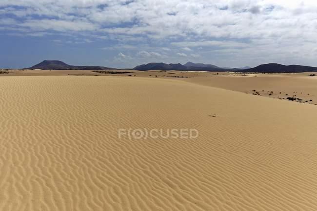 Dunas de areia em dunas errantes de El Jable, las Dunas de Corralejo, parque natural de Corralejo, Fuerteventura, Ilhas Canárias, Spain, Europa — Fotografia de Stock