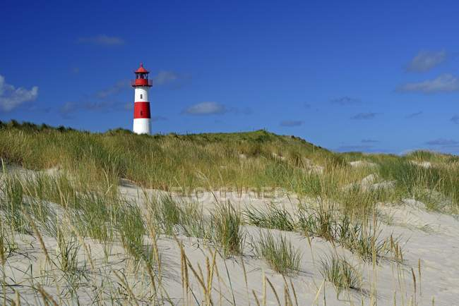 List West Lighthouse behind grassy sand dune, List, Sylt, North Frisian Islands, North Frisia, Schleswig-Holstein, Germany, Europe — стоковое фото