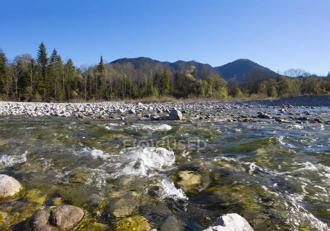 Isar river flowing at Leger, Lenggries, Isarwinkel, Upper Bavaria, Bavaria, Germany, Europe — Stock Photo