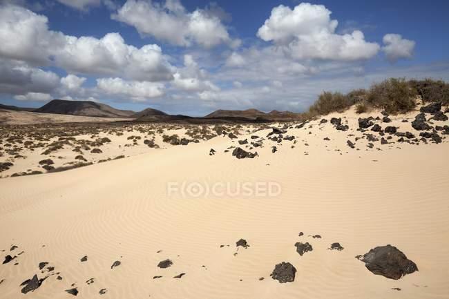 Sand of wandering dunes El Jable, Las Dunas de Corralejo, Corralejo Natural Park, Fuerteventura, Canary Islands, Spain, Europe — стоковое фото