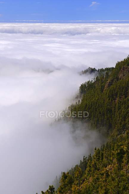 Trade wind clouds piling up around mountains, Teide National Park, Tenerife, Canary Islands, Spain, Europe — Stock Photo