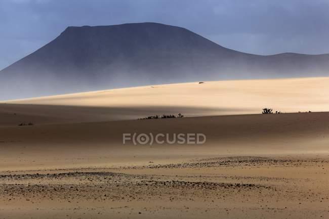Sandstorm in sand dunes, wandering dunes of El Jable, Las Dunas de Corralejo, Corralejo, Fuerteventura, Canary Islands, Spain, Europe — стоковое фото