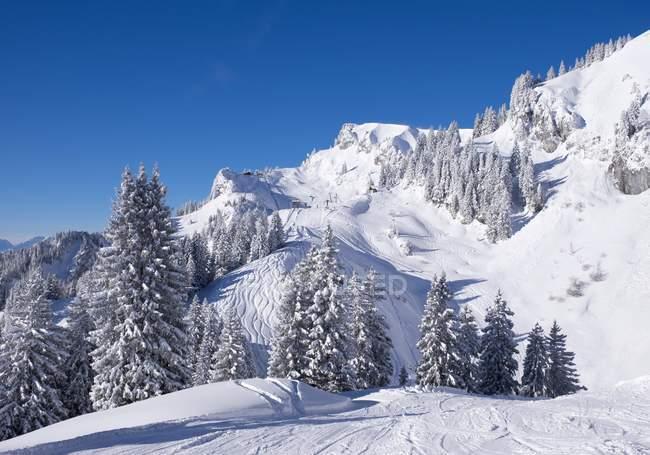 Горы горнолыжного курорта Браунек, Ленгрис, Исарвинкель, Верхняя Бавария, Бавария, Германия, Европа — стоковое фото