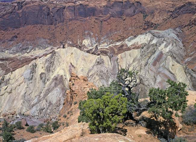 Rocks of Upheaval Dome, Canyonlands National Park, Utah, USA, North America — стоковое фото