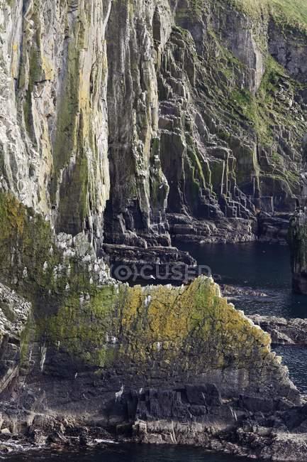 Cliffs and steep coast on Old Head of Kinsale, County Cork, Republic of Ireland, British Isles, Europe — Stock Photo
