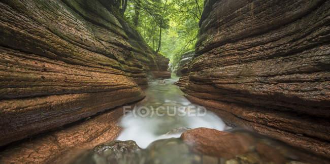 Декорація Tauglbach ущелини з потоком води, Tauglbachklamm, Hallein району, Зальцбург, Австрія, Європа — стокове фото