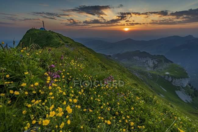 Летний луг гора и встречи на высшем уровне крест с Appenzeller в фоновом режиме на восход, Аппенцелль, Швейцария, Европа — стоковое фото