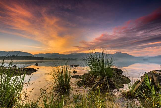 Scenery of Forggensee lake with reflection of cloudy sky and Allguer mountains at sunrise, Fussen, Allgau, Bavaria, Germany, Europe — Stock Photo