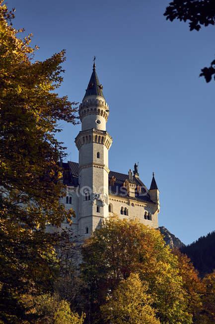 Neuschwanstein castle on mountain, Bavaria, Germany — Stock Photo