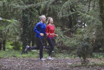 Mature couple jogging in forest — Stock Photo