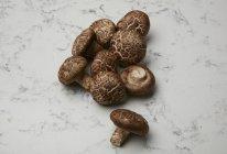 Pilha de cogumelos em mármore — Fotografia de Stock