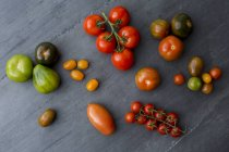 Tomatoes on grey surface — Stock Photo