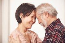Casal sênior abraçando uns aos outros — Fotografia de Stock