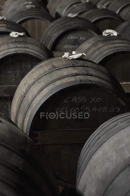 Righe di botti di vino — Foto stock