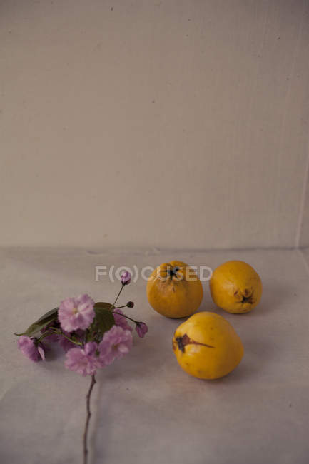 Flowers and lemons on table — Stock Photo
