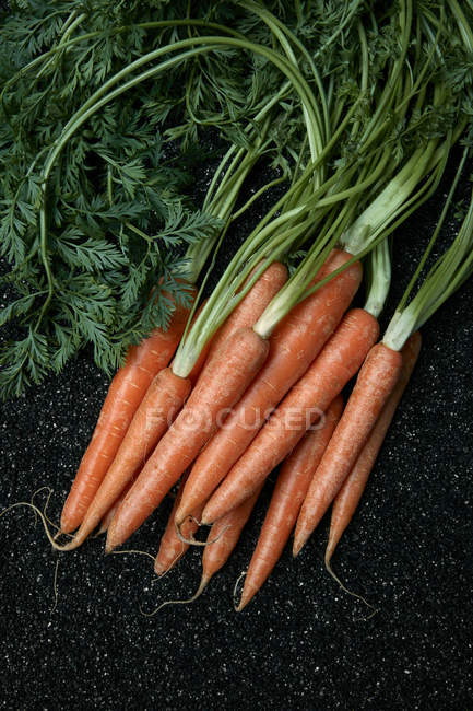 Zanahorias en arena negra - foto de stock