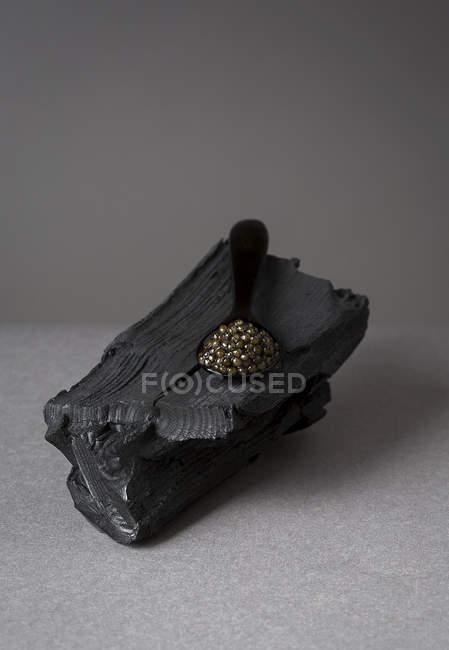Cuillerée de caviar noir de log — Photo de stock