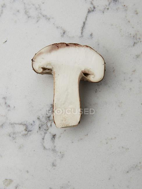 Cogumelo na superfície de mármore — Fotografia de Stock
