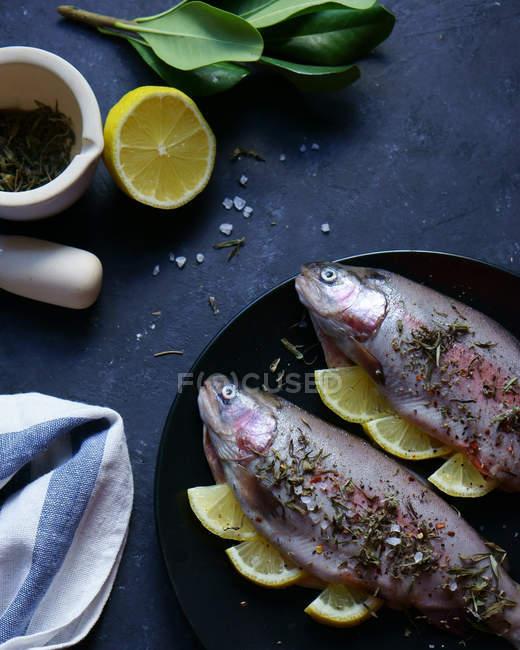 Zwei Forellenfische mit Kräutern und Zitronen — Stockfoto