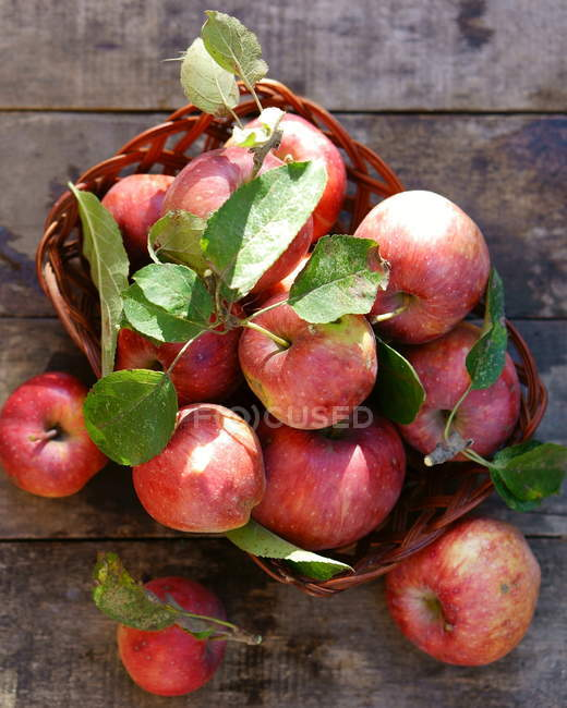 Basket of apples on table — Stock Photo