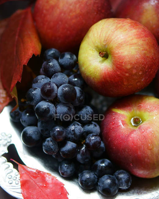 Black grapes and apples — Stock Photo