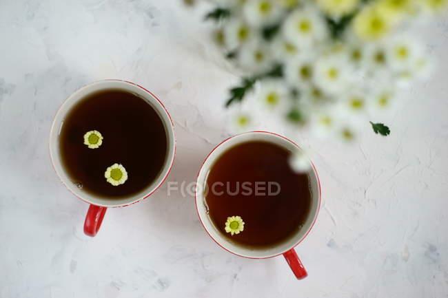 Deux tasses de tisane camomille — Photo de stock