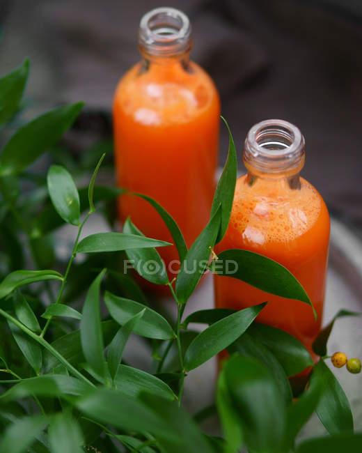 Due bottiglie di succo di arance siciliane — Foto stock