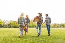 Group of friends walking across field — Stock Photo