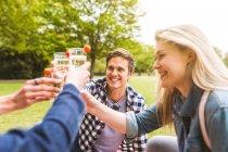 Groupe d'amis, soulevant les verres dans le parc — Photo de stock