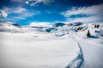 Pista de esquí sobre la nieve cubre el paisaje - foto de stock