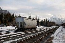 Freight train carriage on railway tracks — Stock Photo